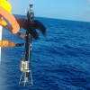 本所引進深水型紊流剖面儀提升海洋觀測技術